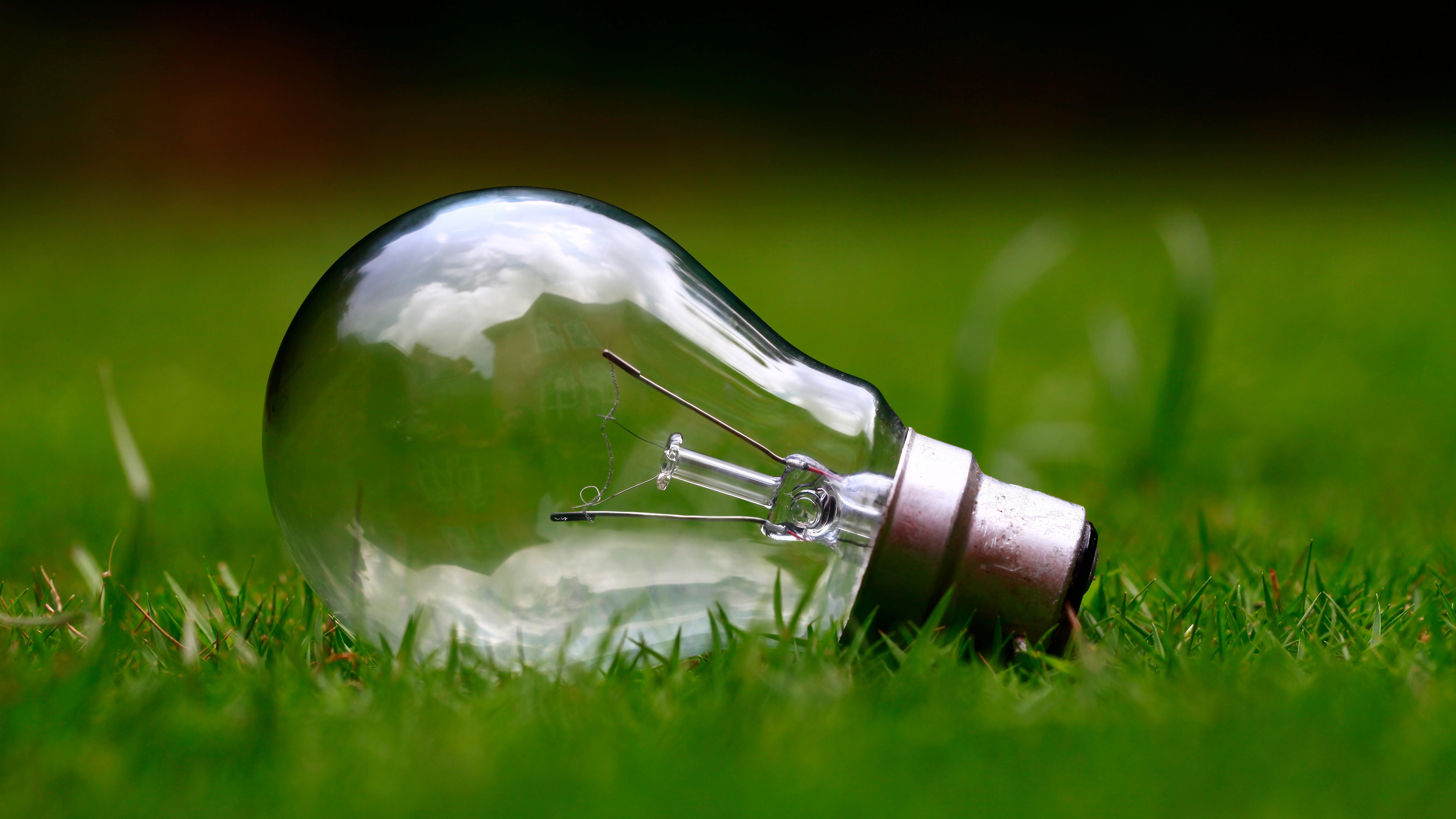 Freelance tips light bulb